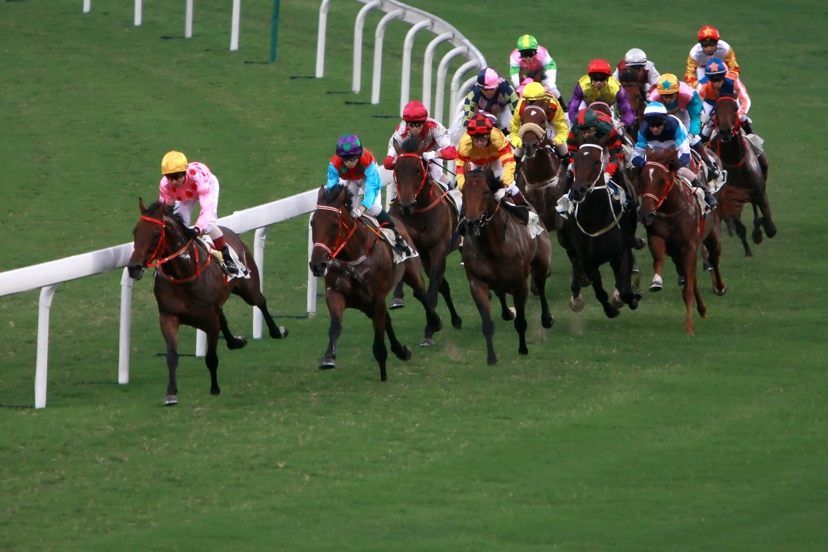 Morphettville Parks Preview 24-Nov-18